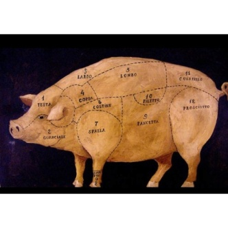 pig diagram 2
