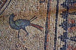 peacock-mosaic ravenna